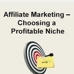 Affiliate Marketing Choosing a Profitable Niche