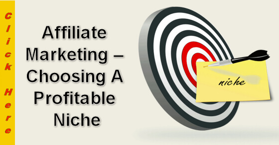 Affiliate Marketing - Choosing a Profitable Niche